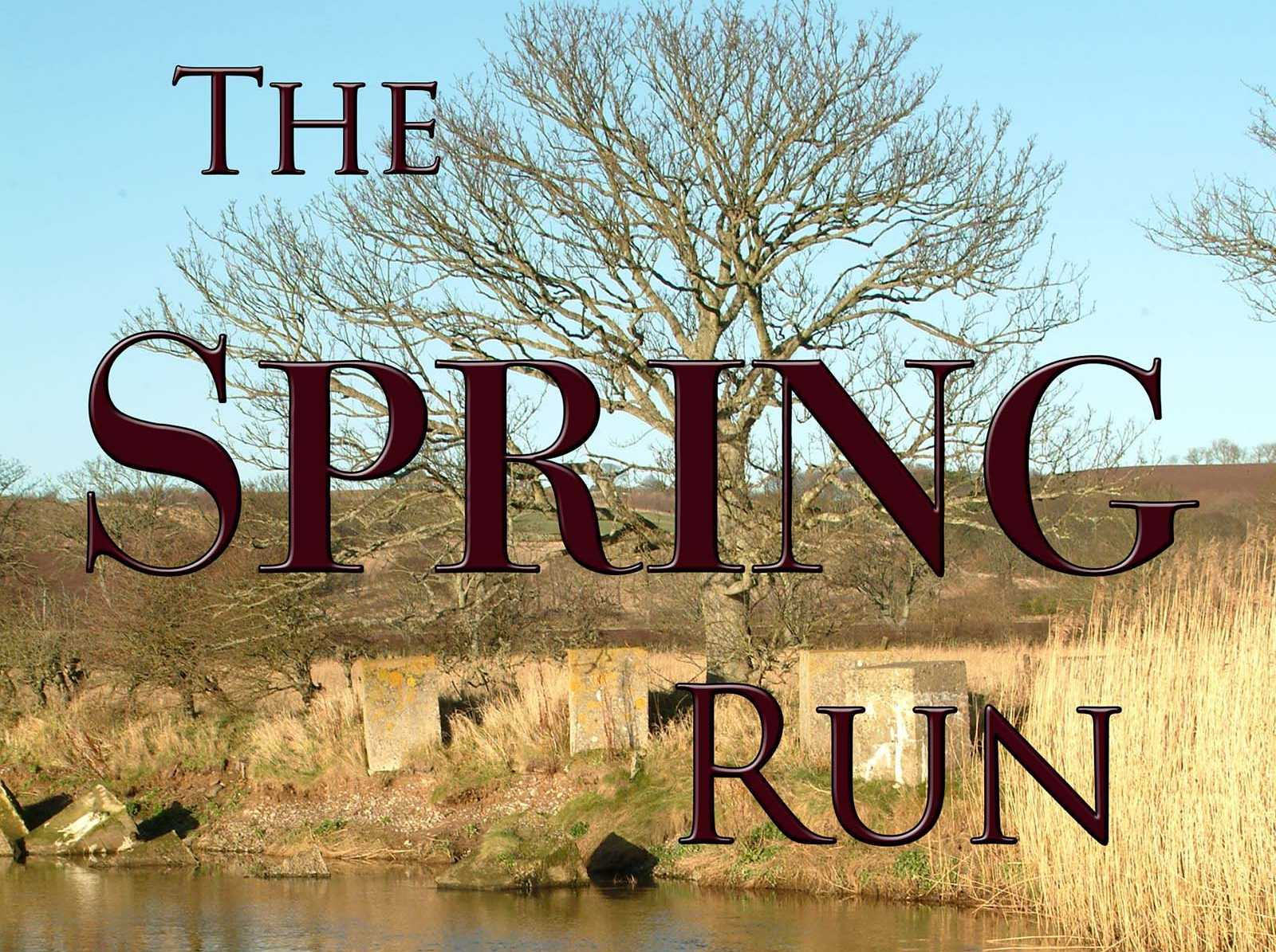 the-spring-run